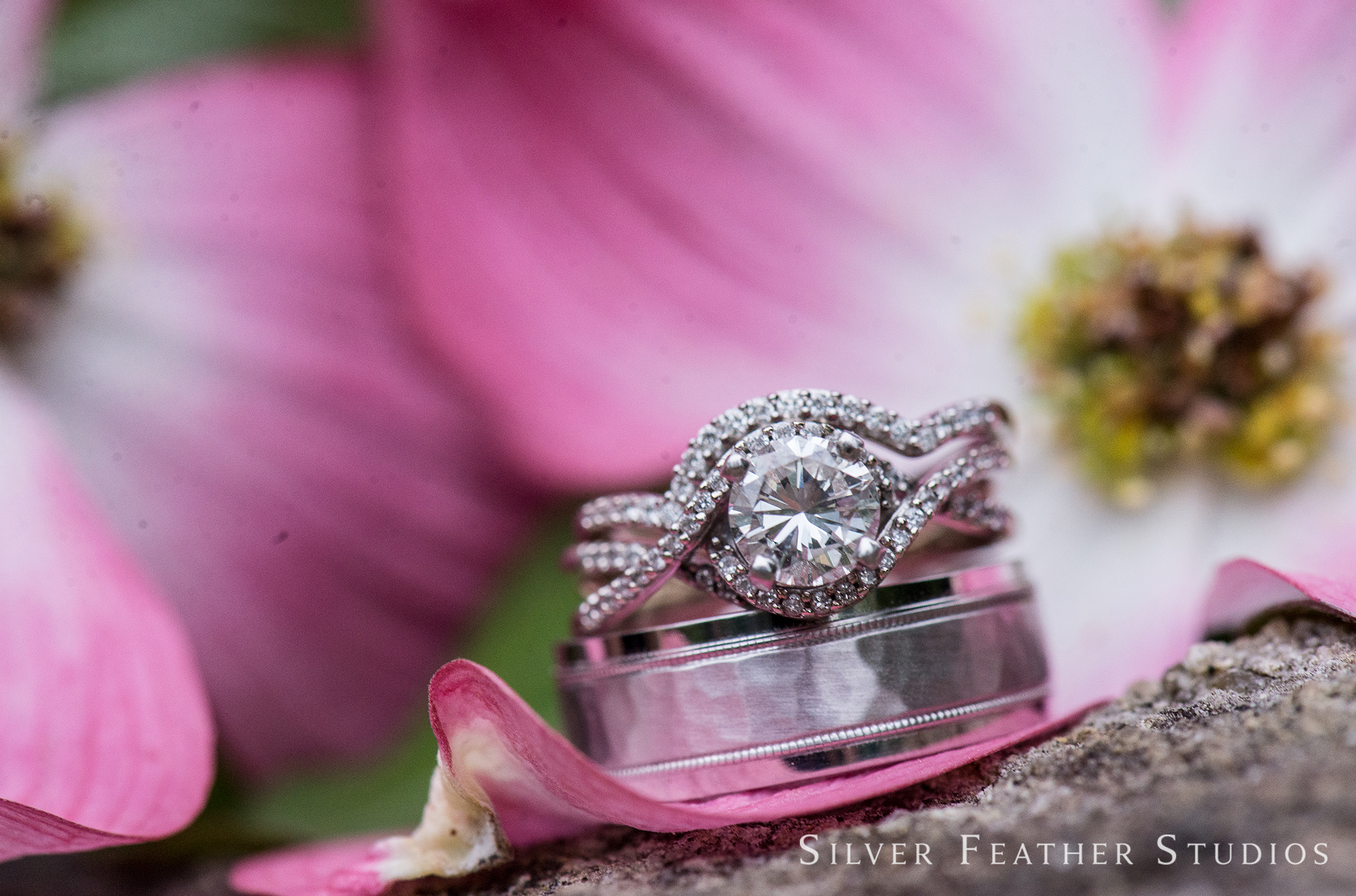 the blog - Spontaneous North Carolina Wedding Photography | Modern ...