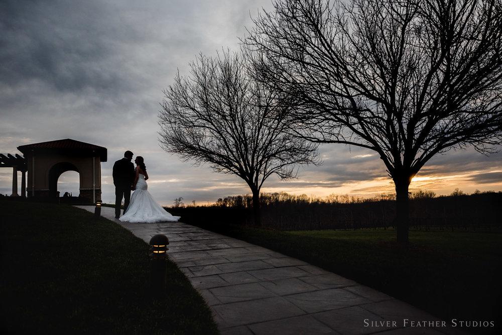 winter-wedding-childress-vineyards-006.jpg