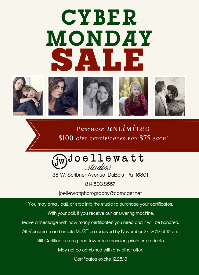 cyber monday sale 2012 tworesize.jpg