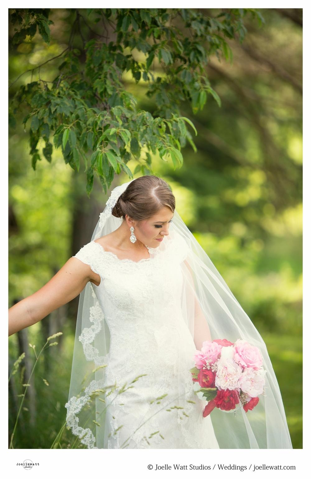 Terwiske Wedding 8.jpg