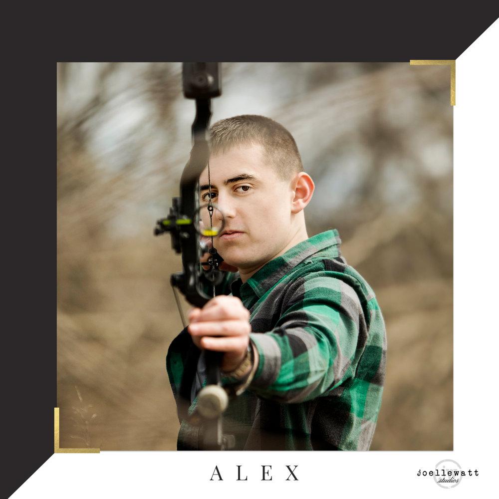 ALEXblog.jpg