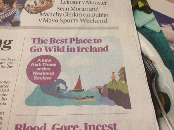 More from  The Irish Times that caught my fancy