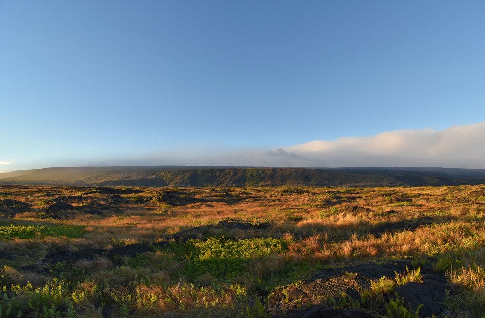 Lava fields in Hawai'i Volcanoes National Park.