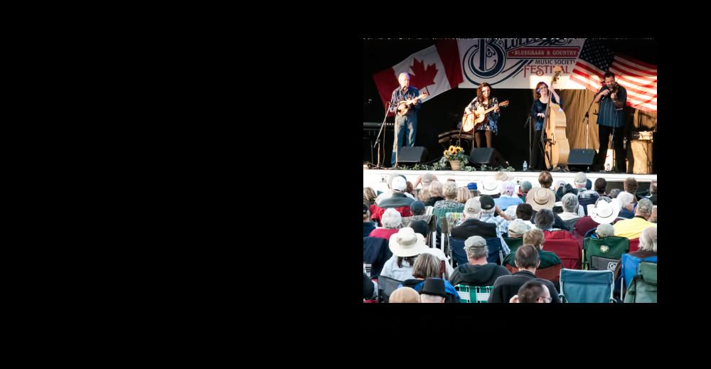 2013 Blueberry Bluegrass Festival Lineup.png