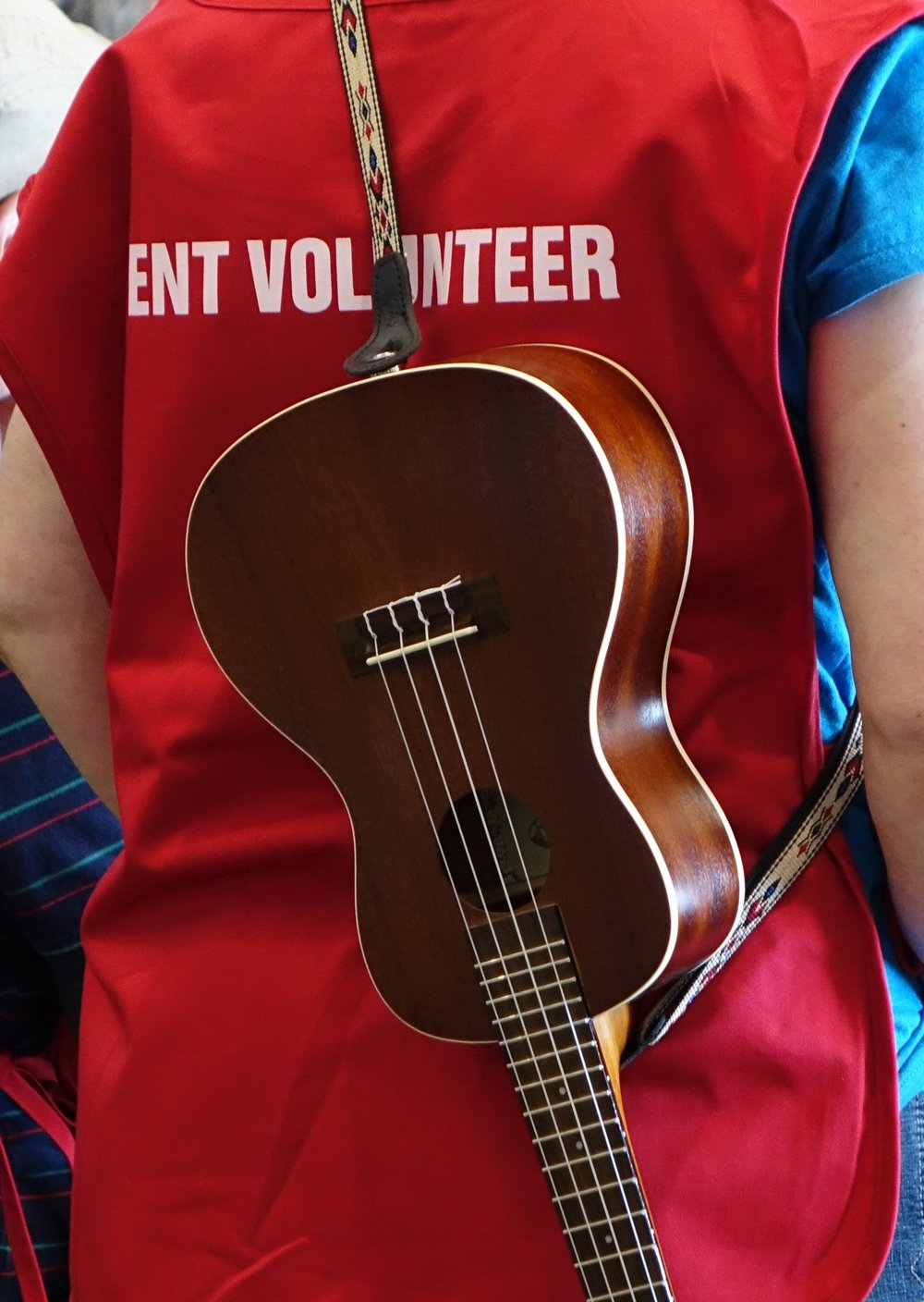 Blueberry Bluegrass Festival - Volunteer