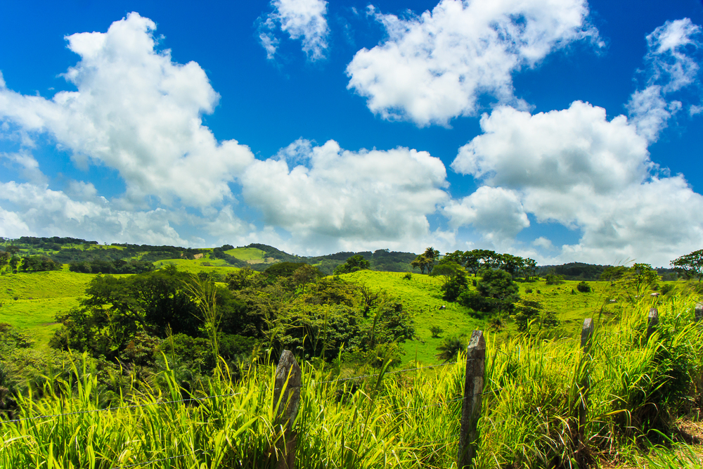 costarica-12.jpg