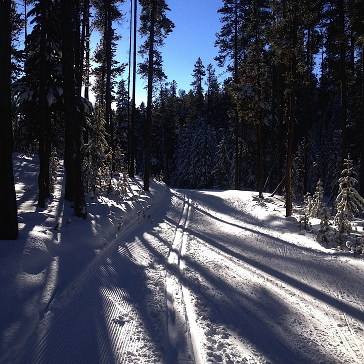 Beautiful trails on my ski with Gavin