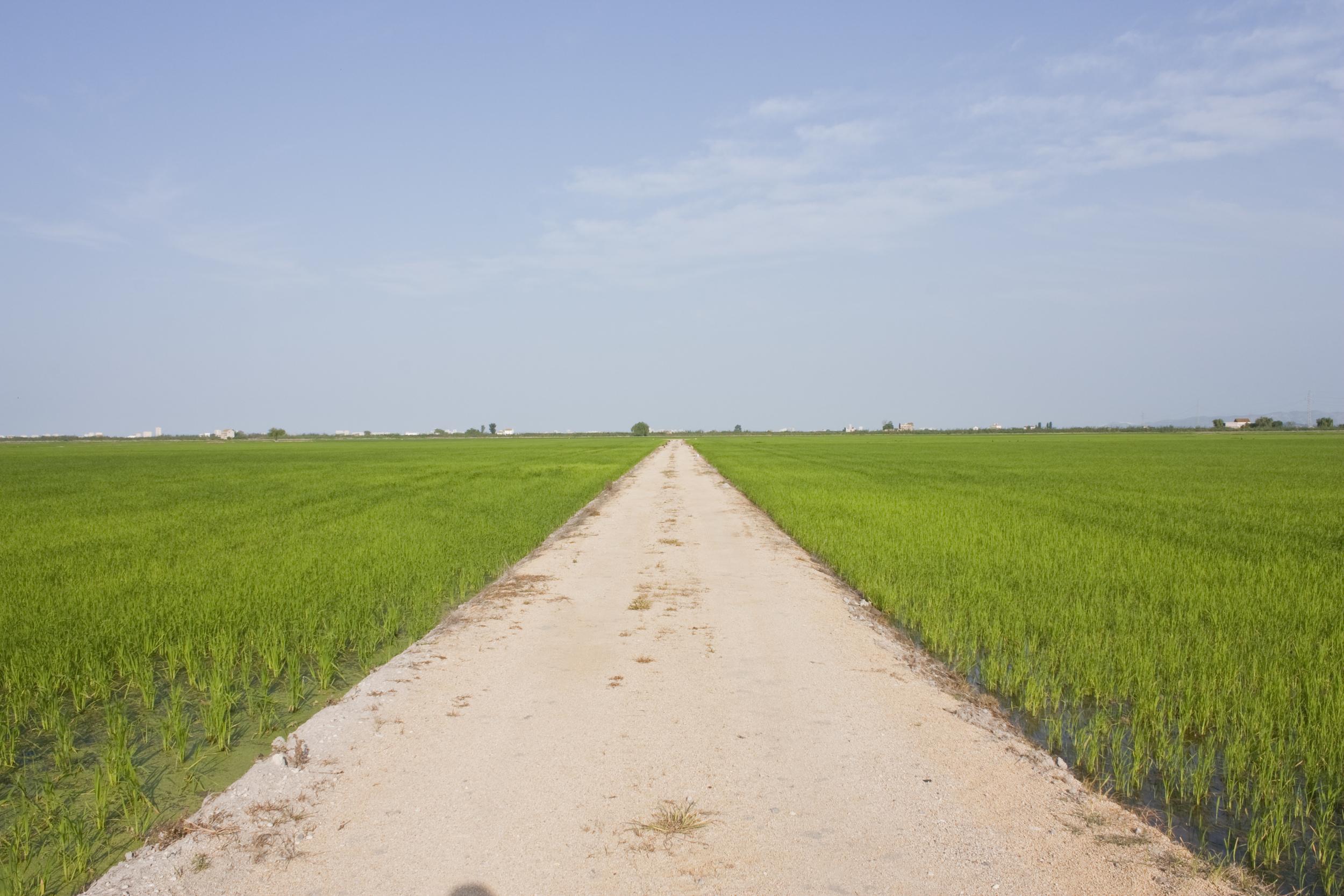 Mucho camino, ¡y muchas ganas de recorrerlo! Foto: Paco Cepas.