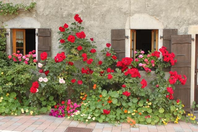 Rose house.jpg