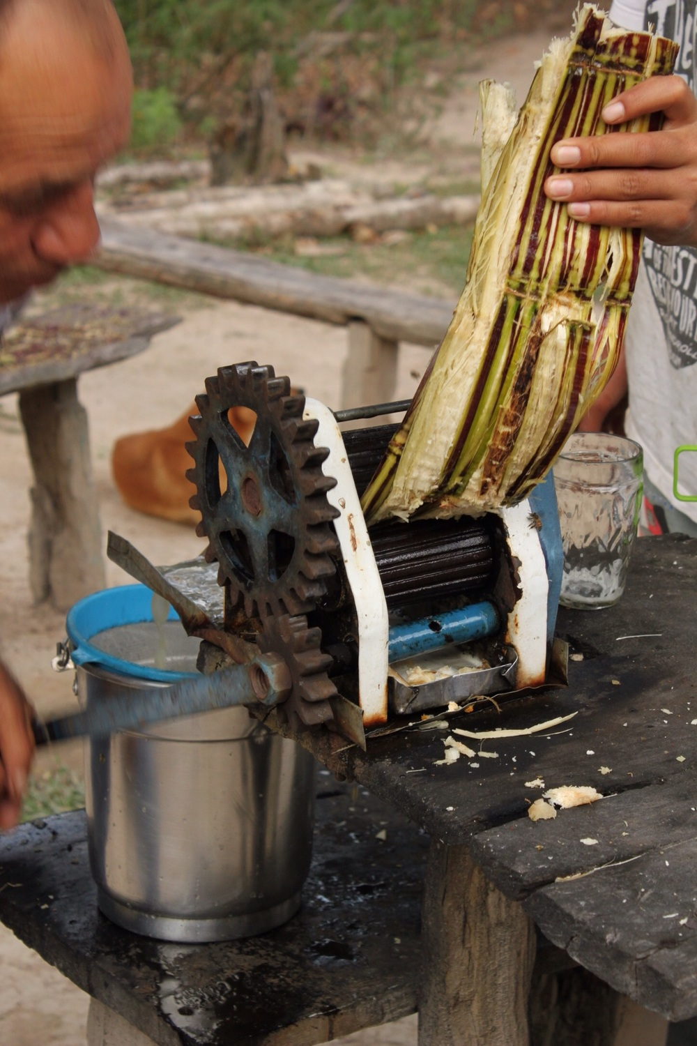 Fresh sugar cane juice - yum!
