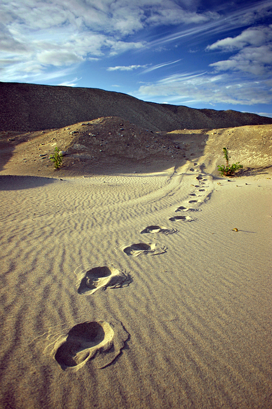 footprints_in_the_sand_by_tfavretto-d1yvmax.jpg