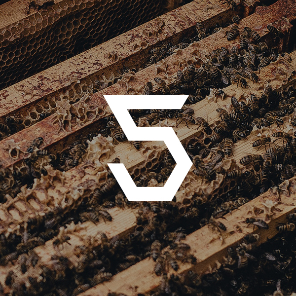 five for the hive - 5% of each sale goes to honey bee health research and bee farming.