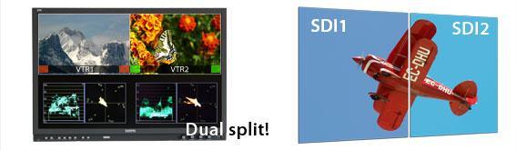 Dual Split.jpg
