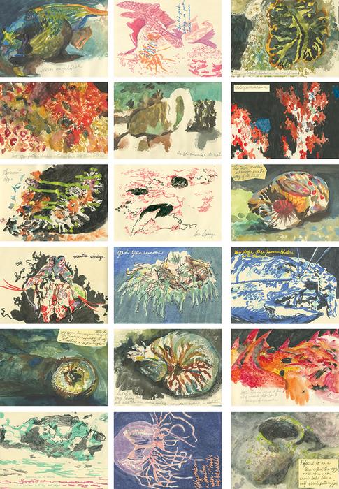 Ocean Organisms • Carrie Riehl, 2013