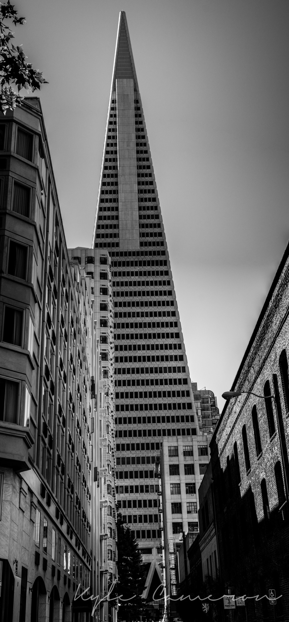 The Transamerica Pyramid