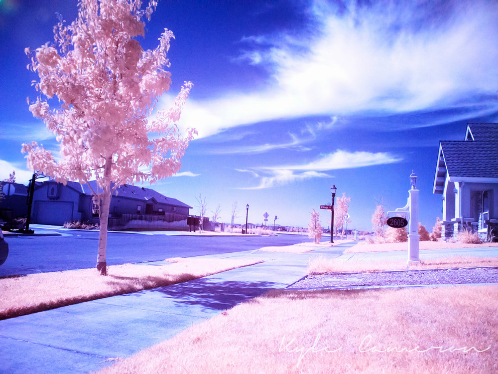 Infrared 1500x994 70 quality (3 of 10).jpg