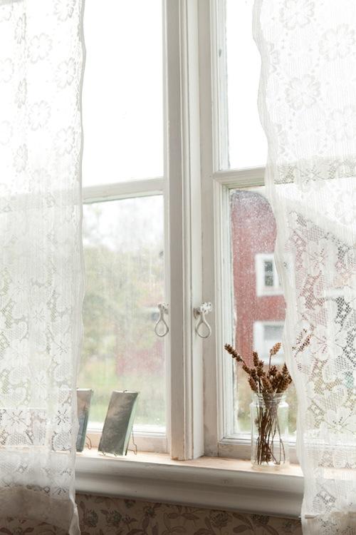 Window-kopia.jpg