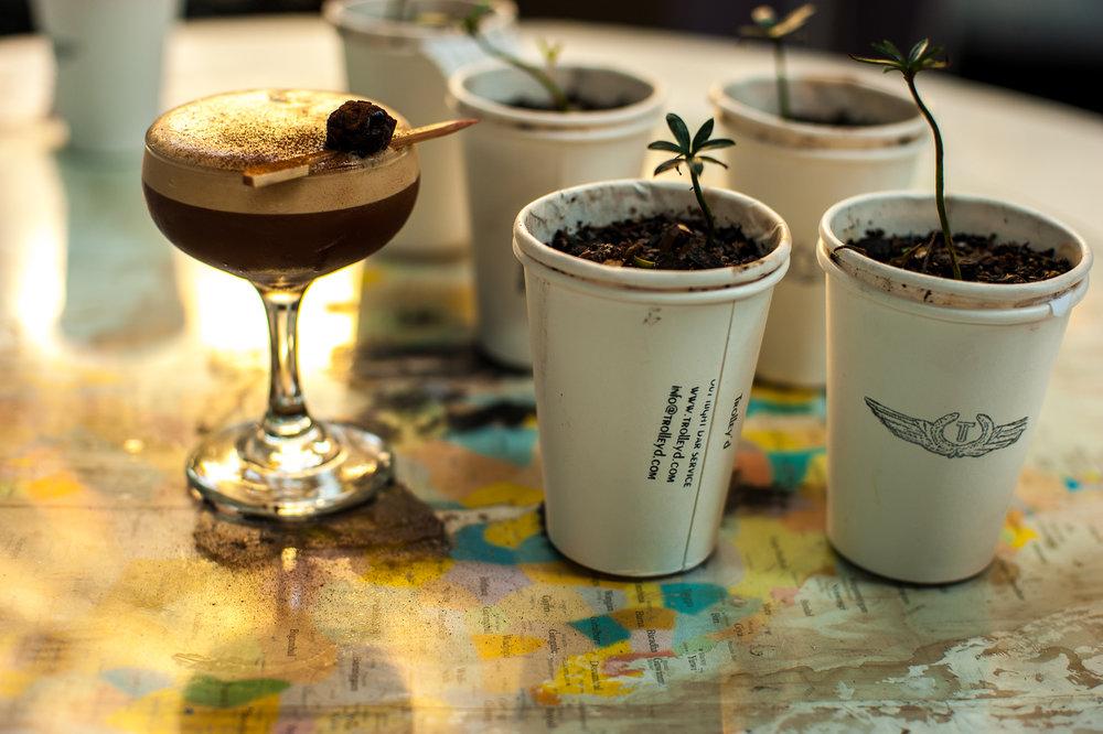 Goongum, Acacia Seed, Kangaroo Valley Espresso Martini