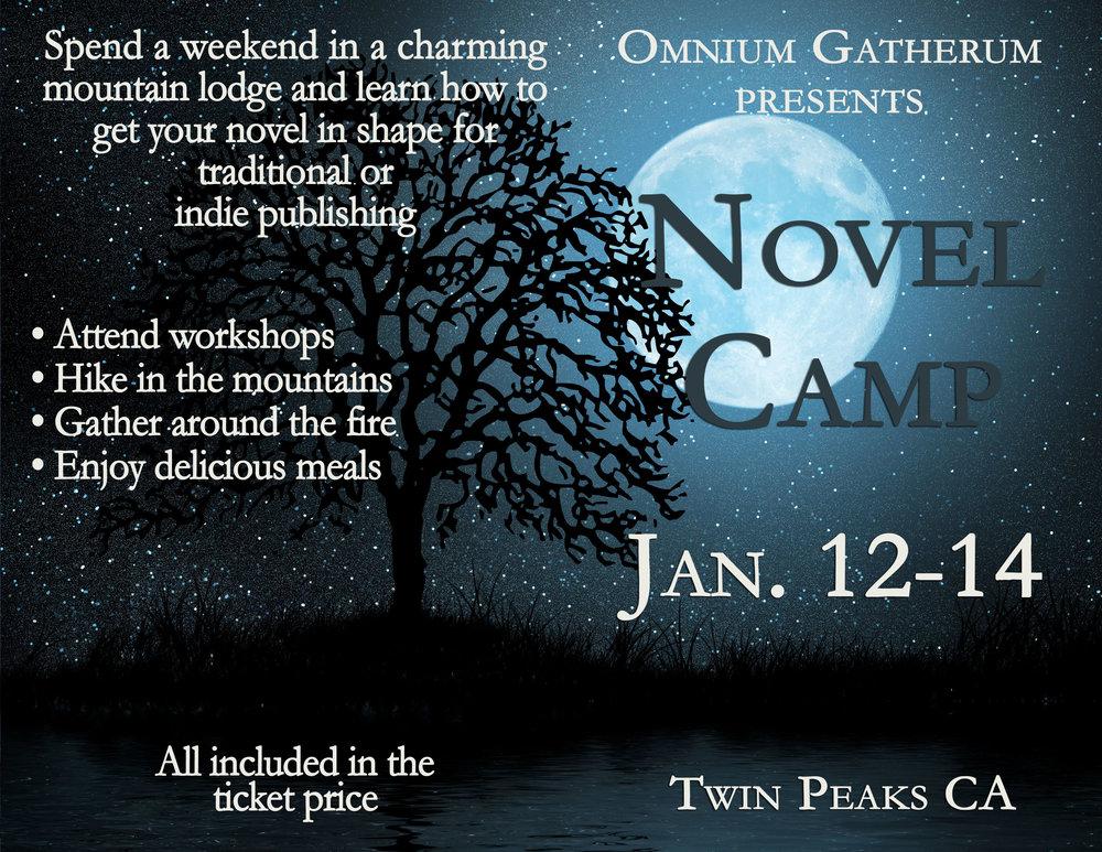 Novel Camp.jpg