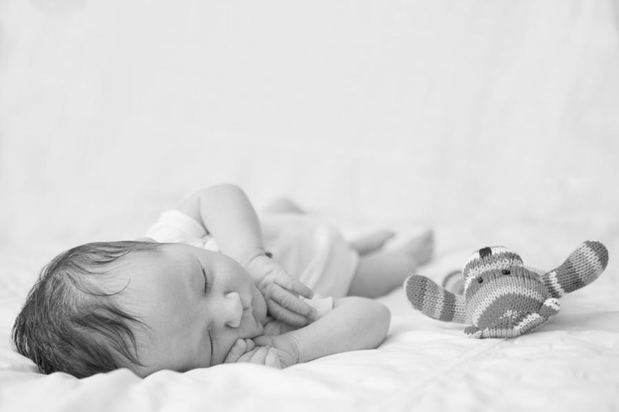 Rose Hewartson_Newborn_ Photography Brisbane028.jpg