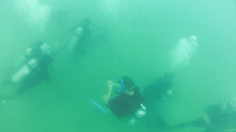 Recruits practise tended diving, a technique for underwater maneuvering in low-visibility conditions. The method involves a tended line manned by a team member on the surface, who can guide divers using line pull signals.