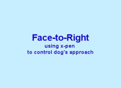 07 FTR using xpen.jpg