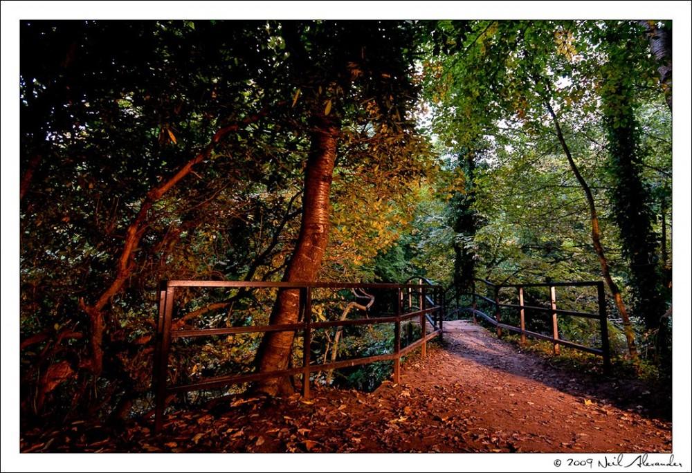 Neil Alexander's Best of 2009 - September - Faked Sunrise over The Wishing Bridge by Lymm Dam