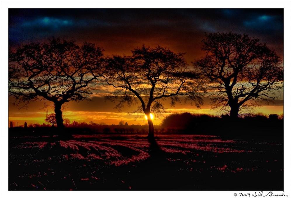 wpid786-Best-of-2009-Lge-2-1024x700.jpg