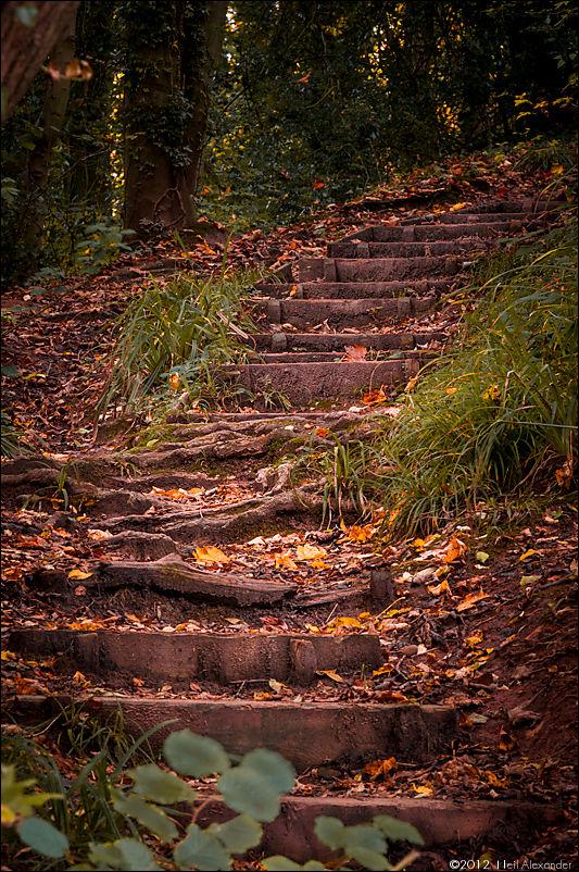wpid19273-Bollin-Valley-in-Autumn-Neil_Alexander-04.jpg