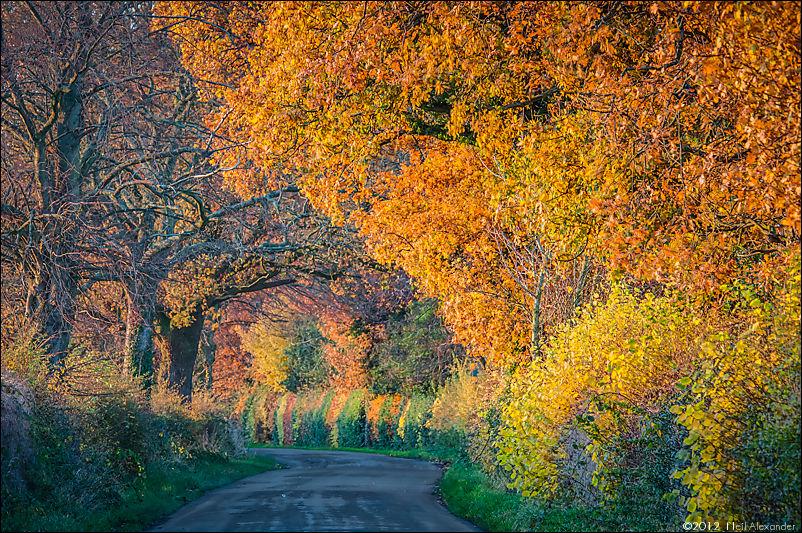 A utumn sunset, Davenport Lane, Mobberley, Cheshire – Neil_Alexander