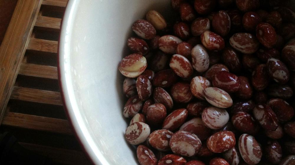 cranberry beans after soaking overnight