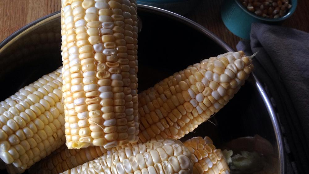 fresh shucked corn