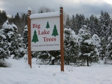 Big Lake Trees Sign Circa 1985