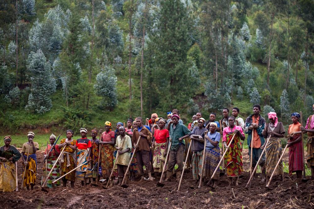 Abishyizehamwe farmers' co-op in southern Rwanda.