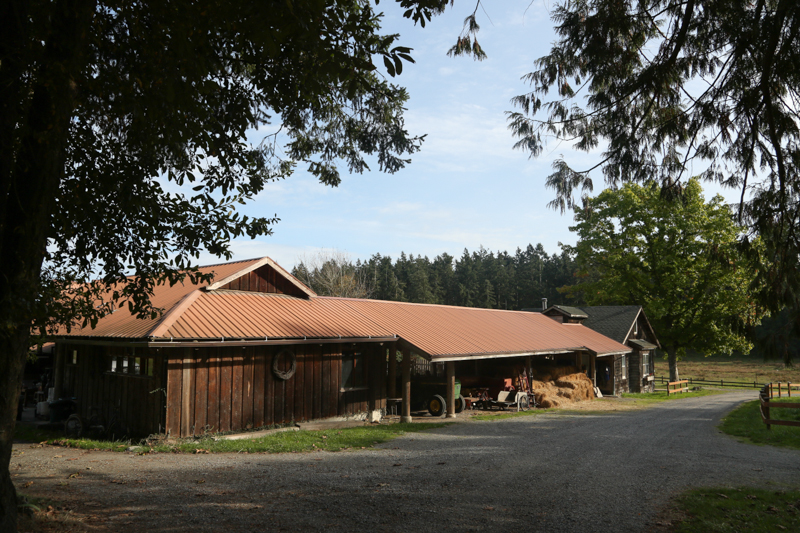 The guest house and one of the barns.