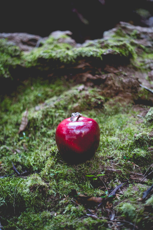 Snow White-6.jpg