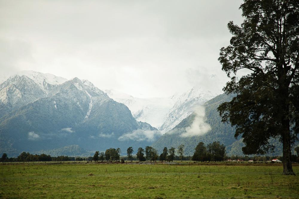 NZ LR-208.jpg