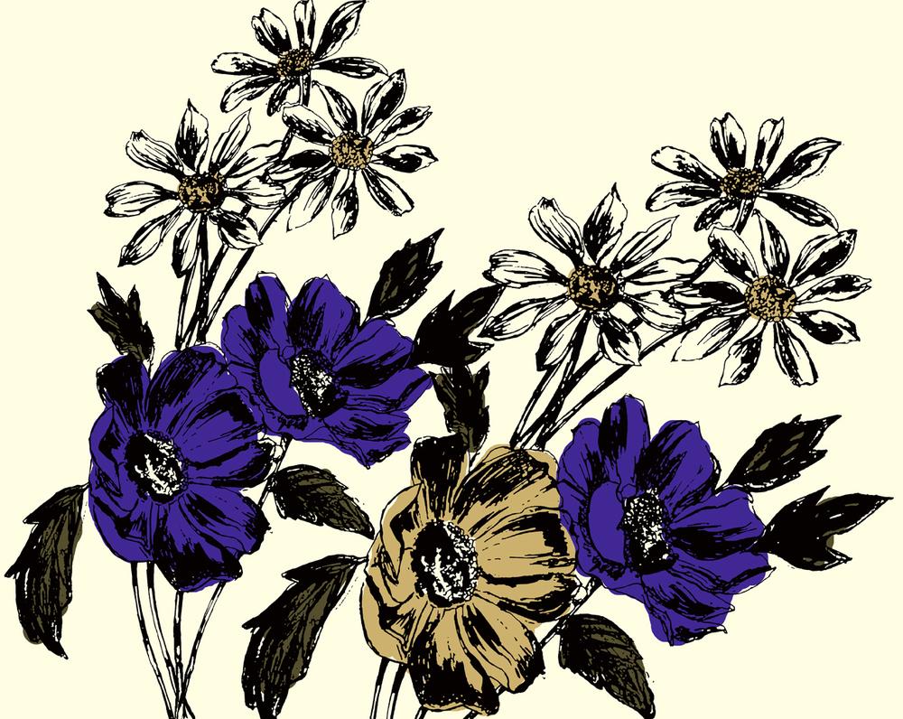 Anne Marie Jackson wildflower illustration