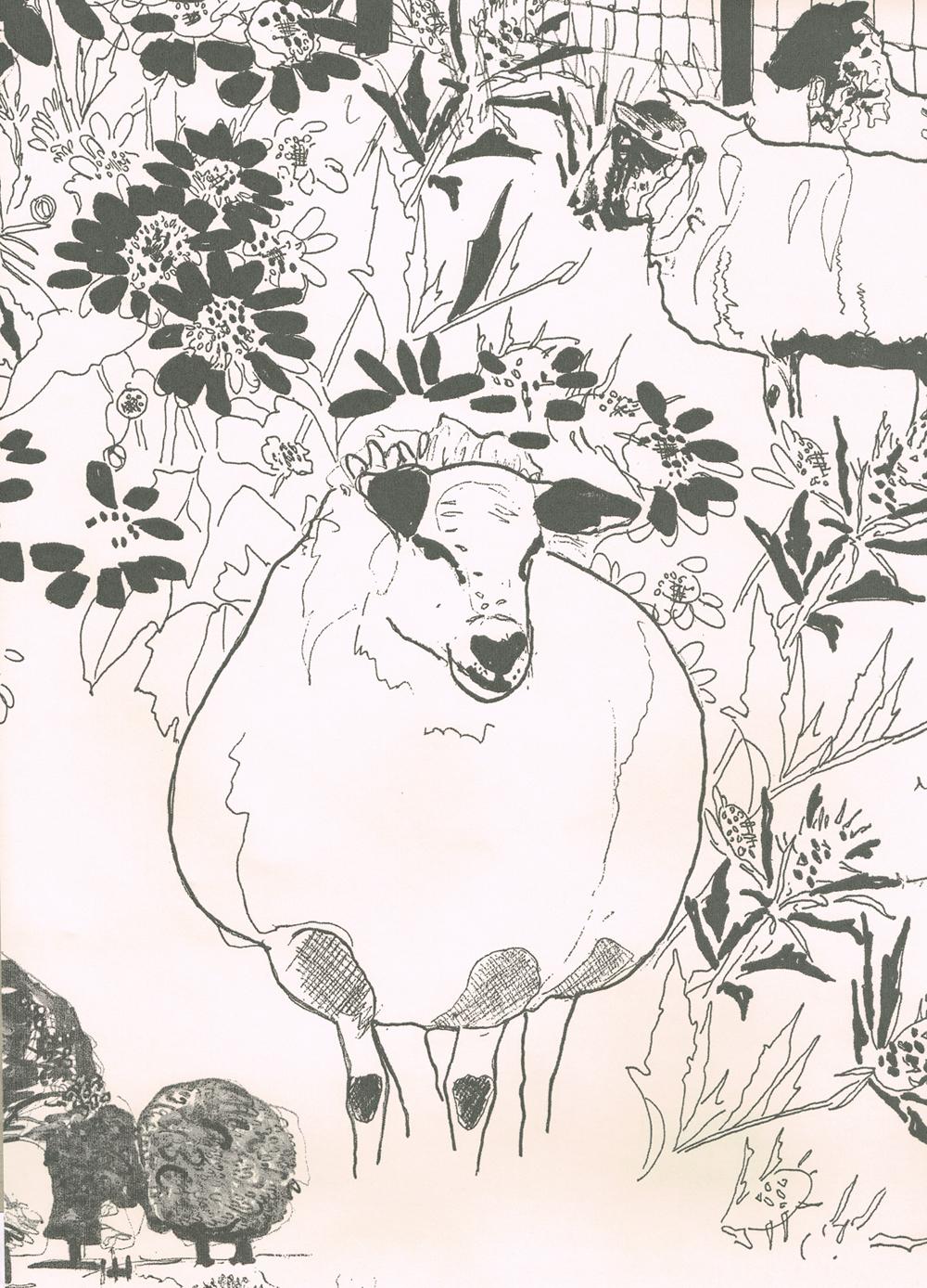 Sheep - Belynda Sharples
