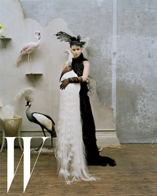jennifer-lawrence-goes-black-swan-w-magazine-photos-002.jpeg