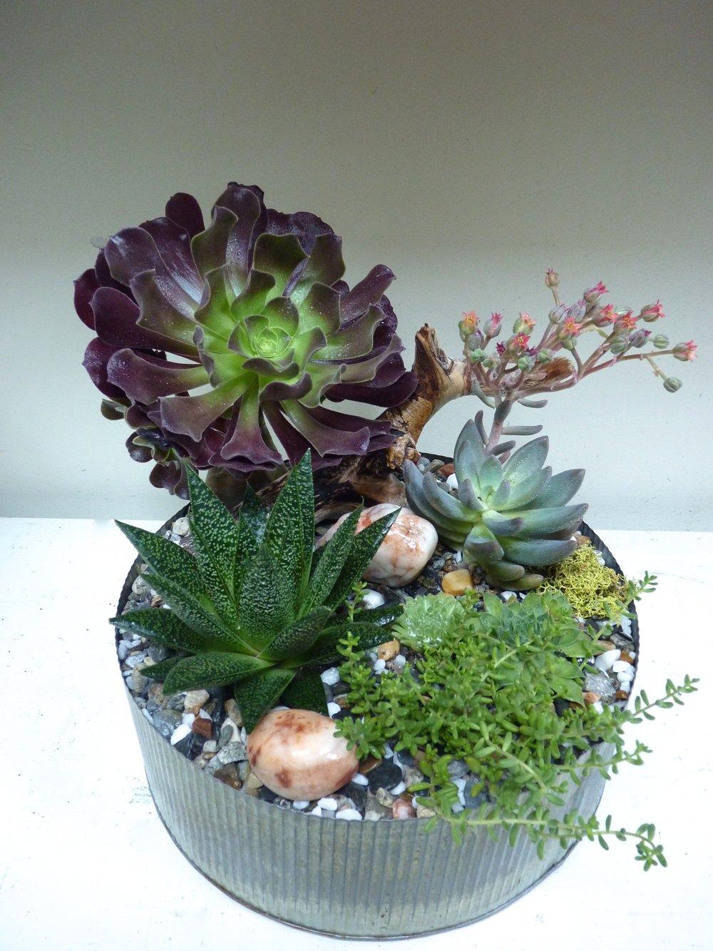 rustic tin succulent planter.jpg