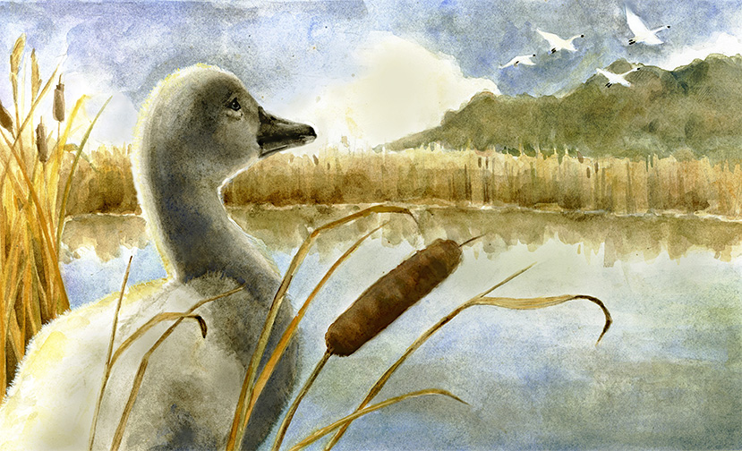 ducklung3small.jpg