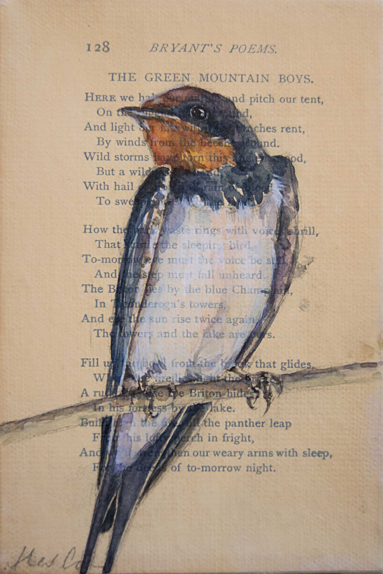 "Barn Swallow. 4x6"" watercolor, pencil and gesso on antique book paper/canvas.  She is part of a collection I painted of 25 of the most common avian species in Central Ohio."