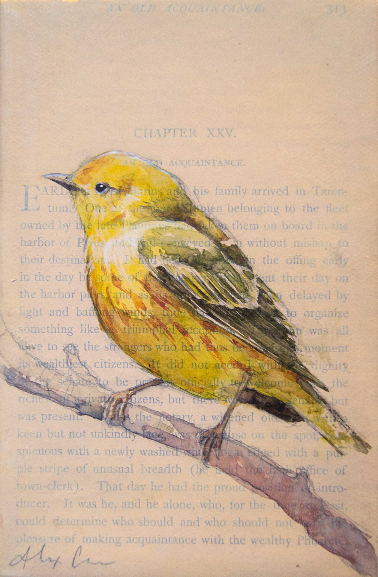 "Yellow Warbler. 4x6"" watercolor, pencil and gesso on antique book paper/canvas. I recently painted 25 of the most common avian species in Central Ohio for a show. I'll try to remember to post a photo of them as they were hung in the gallery space at some point. I enjoyed painting this little warbler with it's bright color."