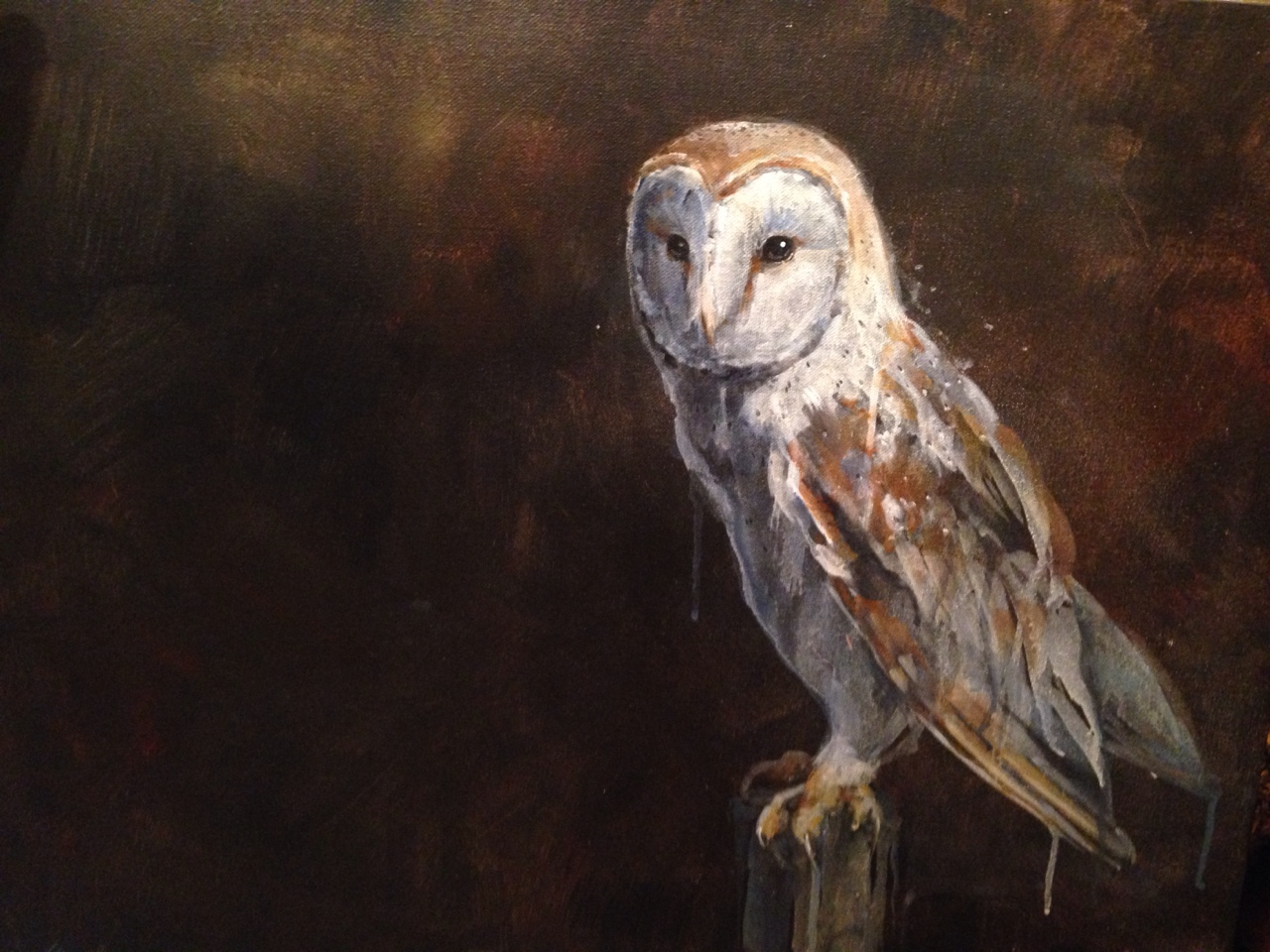 "18x24"" acrylic on canvas barn owl. I love barn owls. They are my favorite subject to paint. They seem… Otherworldly. Like some kind of fairy creature.    Fun fact: they're vocalization sounds demonic- similar to  a Nazgul! :)"