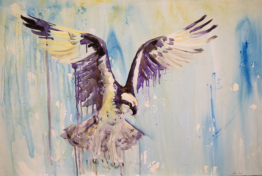 "24x36"" acrylic on canvas, Osprey.   Ospreys are fish-eagles. They are very large birds of prey that dive into water to catch fish. They often nest on man-made platforms built for them on/next to bodies of water such as lakes, reservoirs and rivers."