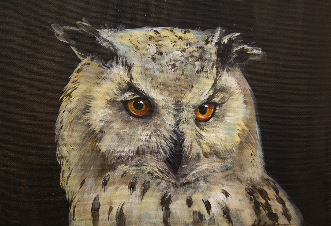 "Pale morph eagle owl. 9x12"". Acrylic on canvas. LOVED painting him :)"