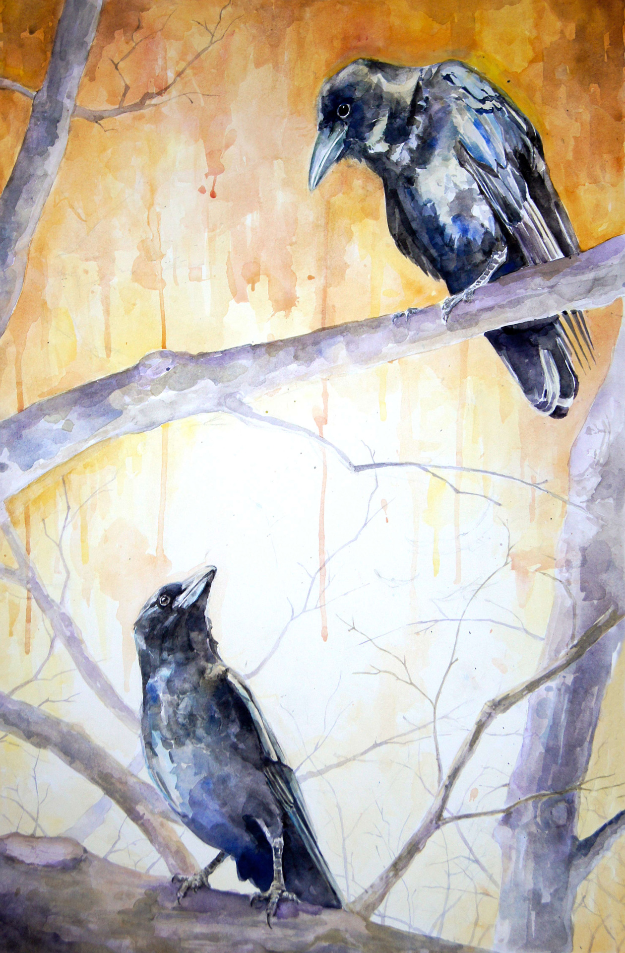 My crow piece is finished. 18x26 watercolor.