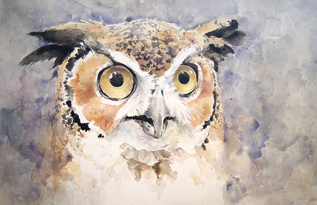 The owl is finished! Finished him last week. I'm pretty happy with him. He is watercolor on cold press Bainbridge illustration board about 20x30