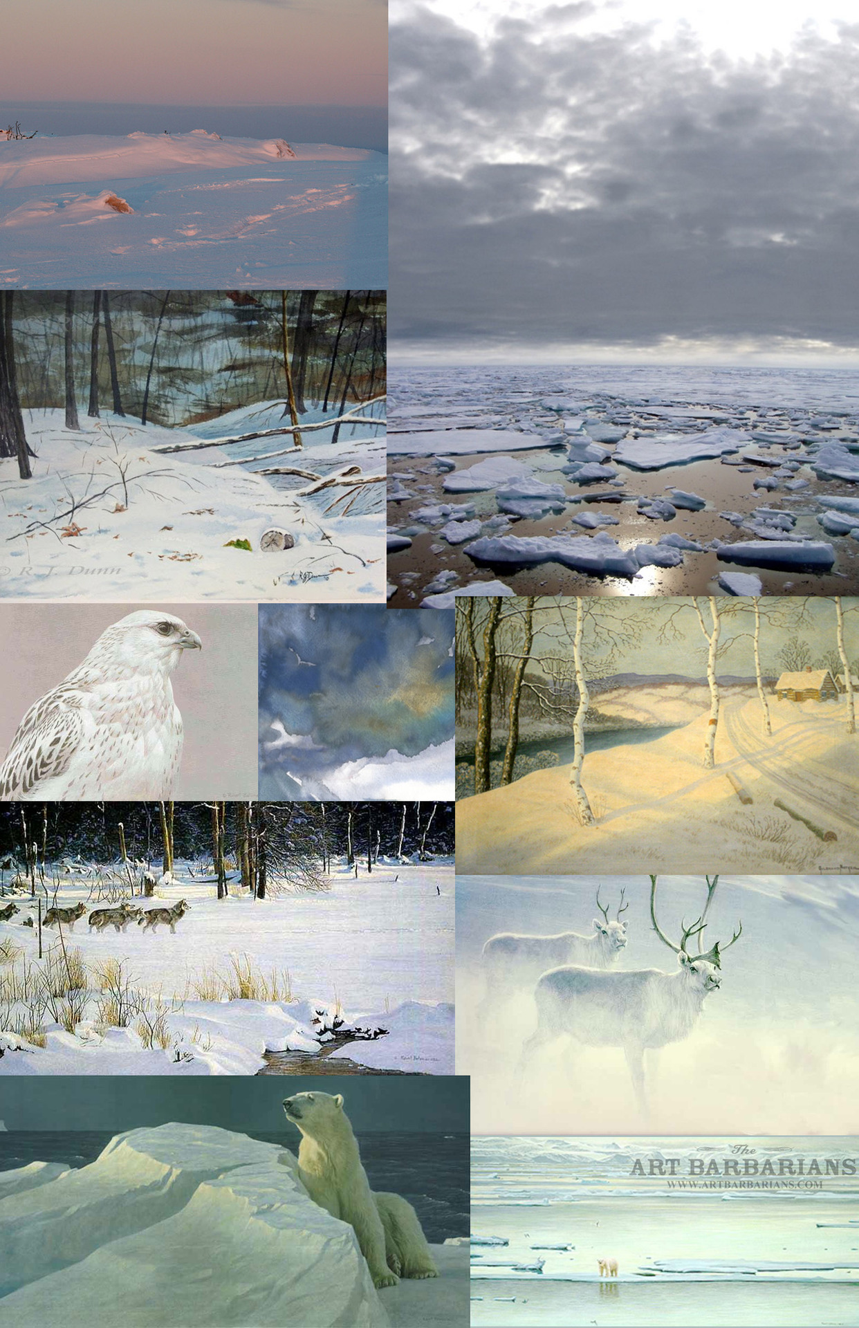Moodboard for my next big illustration. It will be similar in concept to my last one (with the opossum and the deer etc.) but it will be an arctic or snow scene.